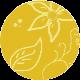 Žuti krug